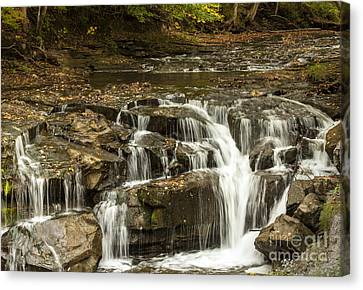 Java Falls In Autumn Canvas Print by Darleen Stry