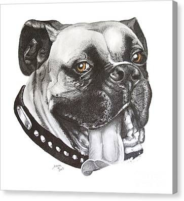 Canvas Print featuring the drawing Jed by Marianne NANA Betts