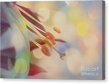Joyfulness Canvas Print by Aimelle