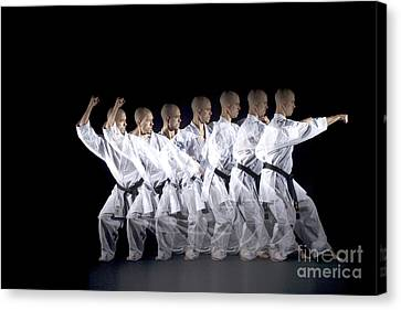 Karate Expert Canvas Print