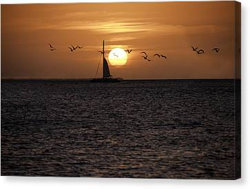 Canvas Print featuring the photograph Key West Sunset by Paul Plaine