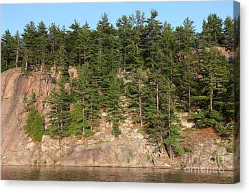 Killarney Provincial Park Canvas Print by Ted Kinsman