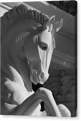 Canvas Print featuring the photograph Knight by Linda Edgecomb