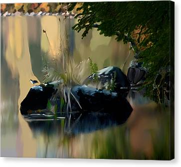 Lake At Groton Vt Canvas Print