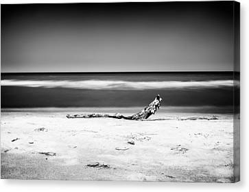Lake Huron Canvas Print by Tanya Harrison