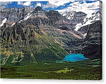 Lake O'hara Canvas Print by Steve Harrington
