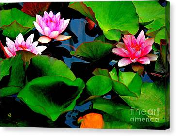 Lilly Abstract Canvas Print