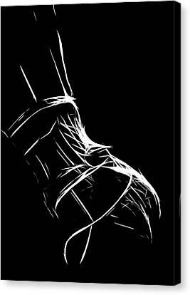 Lingerie Canvas Print by Steve K