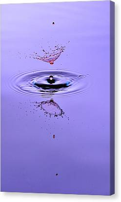 Liquid Collisions Canvas Print by Gianfranco Merati