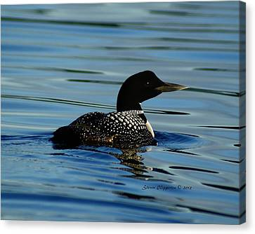 Canvas Print featuring the photograph Loon 2 by Steven Clipperton