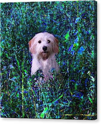 Lost In The Paint Canvas Print by Brandy Nicole Neal