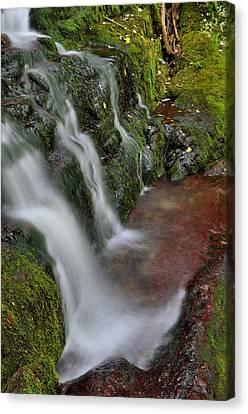 Lower Buttermilk Falls Canvas Print by Stephen  Vecchiotti