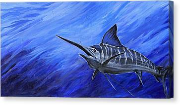 Marlin Canvas Print by Jenn Cunningham