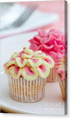 Tea Party Canvas Print - Mini Flower Cupcakes by Ruth Black