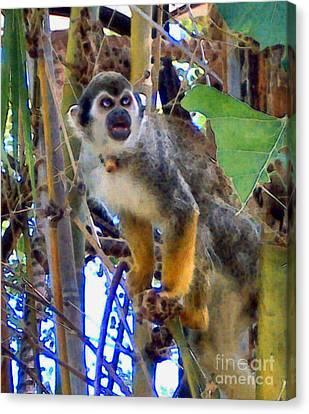 Monkeyshines Canvas Print by Elinor Mavor