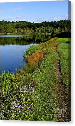Morning Big Ditch Lake Canvas Print by Thomas R Fletcher