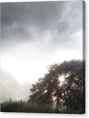 Morning Sunlight  Canvas Print by Les Cunliffe