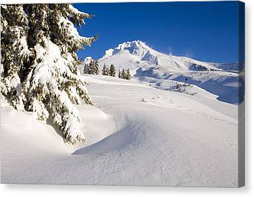 Mount Hood, Oregon, United States Of Canvas Print by Craig Tuttle