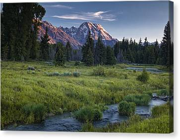 Mountain Stream Canvas Print by Andrew Soundarajan
