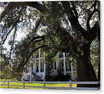 Canvas Print featuring the photograph Nottaway Plantation by Helen Haw