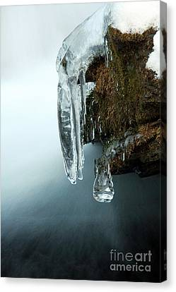 Of Ice And Water Canvas Print by Darren Fisher