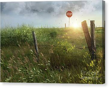 Old Country Fence On The Prairies Canvas Print