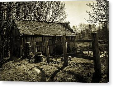 Old Fashioned Shed Canvas Print by Dawn OConnor