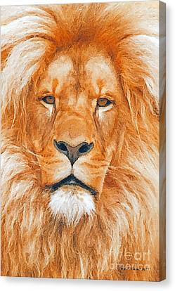 Old Lion Canvas Print by Jerry L Barrett
