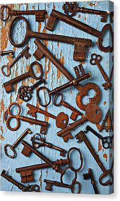 Old Skeleton Keys Canvas Print by Garry Gay