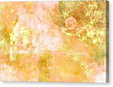 Orange Peel Canvas Print by Christopher Gaston