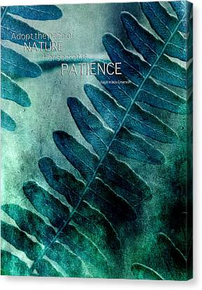 Pace Of Nature Canvas Print by Bonnie Bruno