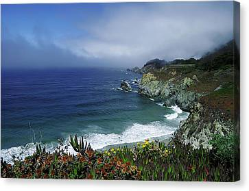 Canvas Print featuring the photograph Pacific Coast by Renee Hardison