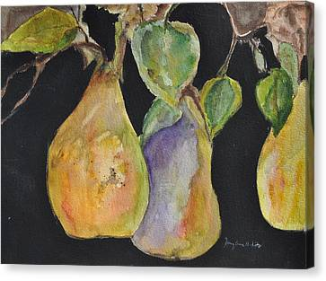Pears On The Vine Canvas Print