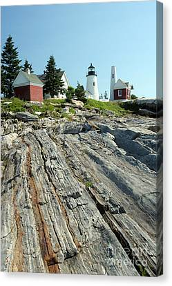 Pemaquid Point Lighthouse Canvas Print by Ted Kinsman