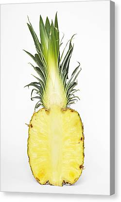 Pineapple Canvas Print - Pineapple Ananas Comosus by Matthias Hauser