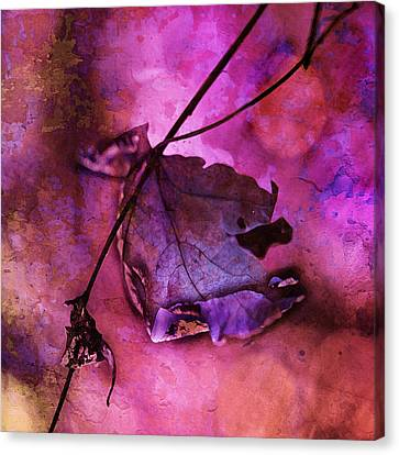 Love Hangs On Canvas Print by Bonnie Bruno
