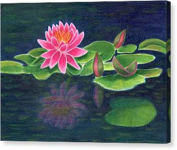 Pink Lily Of The Pond Canvas Print by Jeanne Kay Juhos