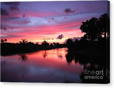 Plantation Preserve Sunset Canvas Print by Jennifer Zelik