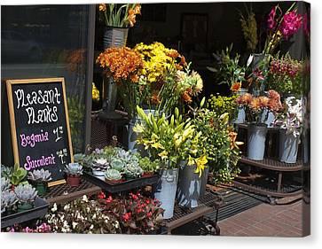 Pleasant Plants Canvas Print