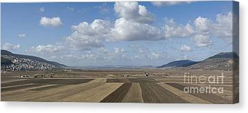 Plowed Agricultural Fields In The Beit Netofa Valley Canvas Print by Noam Armonn