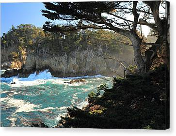 Canvas Print featuring the photograph Point Lobos Cypress by Scott Rackers