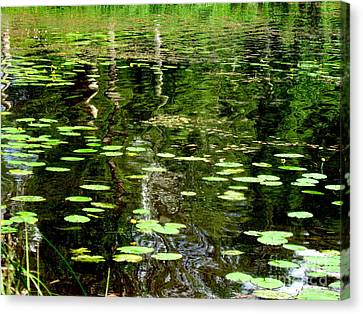 Pond Canvas Print by Pauli Hyvonen