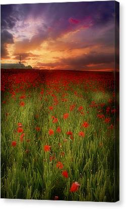 Canvas Print featuring the photograph Poppies At Dusk by John Chivers