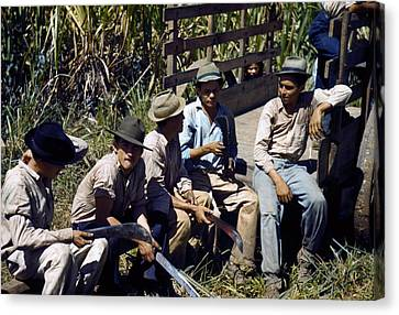 Puerto Rico. Sugar Cane Workers Resting Canvas Print by Everett
