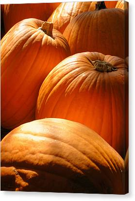 Pumpkin Glow Canvas Print by The Forests Edge Photography - Diane Sandoval