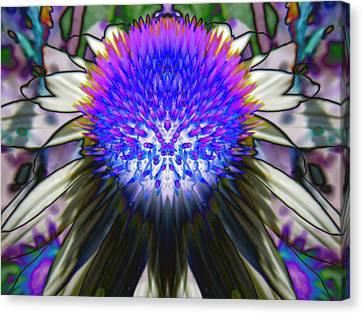 Purple Coneflower Canvas Print by Michele Caporaso