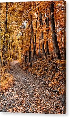 Ramble On Canvas Print by Bill Cannon