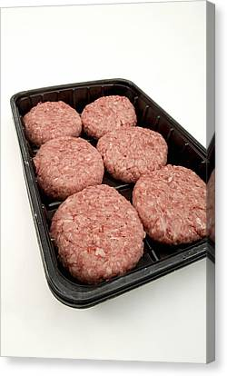 Raw Burgers Canvas Print