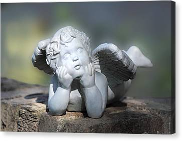 Reclining Angel Canvas Print by Linda Phelps