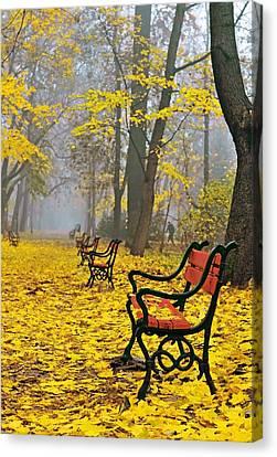 Maple Season Canvas Print - Red Benches In The Park by Jaroslaw Grudzinski